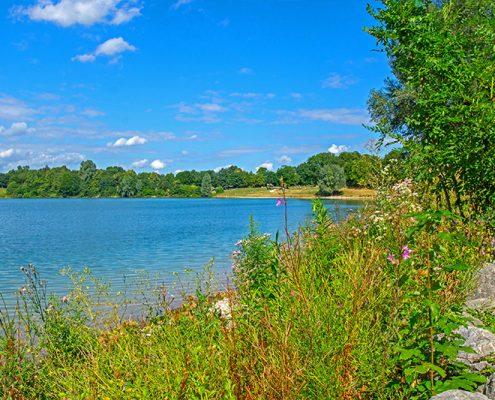 Fernsehbeitrag zum Heimstettener See