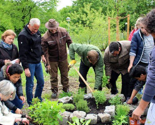 Integration durch gemeinsame Gartenarbeit: Beim Anlegen einer Kräuterschnecke geht's auch ums Miteinander.