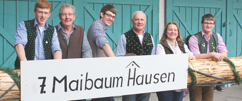 Maibaum Hausen 2015