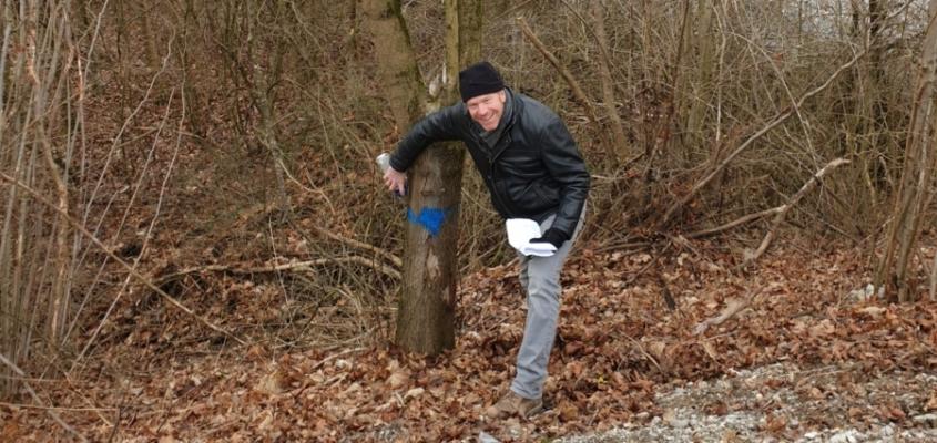 Stephan Keck, Aufsichtsratsvorsitzender der Landesgartenschau GmbH markierte mit blauer Farbe erste Bäume, die erhalten bleiben können.