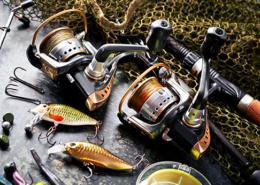 Infos zum Fischereirecht