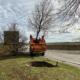 Ein Baum auf Reisen: Vom Heimstettener Moosweg wird die Linde zu ihrem neuen Pflanzort gebracht. Foto: Sophia Schreib/Kirchheim 2024 GmbH