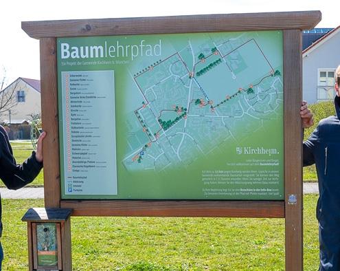 Foto: Erster Bürgermeister Maximilian Böltl und Umweltsamtleiter Robert Maier neben der Infotafel für den Baumlehrpfad.